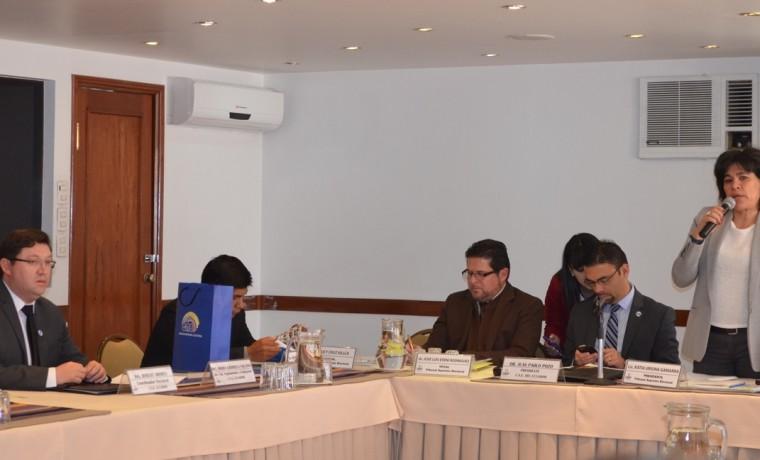 1. La presidenta del TSE, Katia Uriona, y el presidente del CNE Ecuador, Juan Pablo Pozo, en la inauguración del taller.