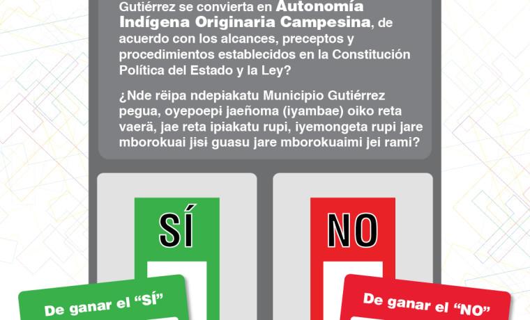 161024-afiche-referendo-preguntas-07