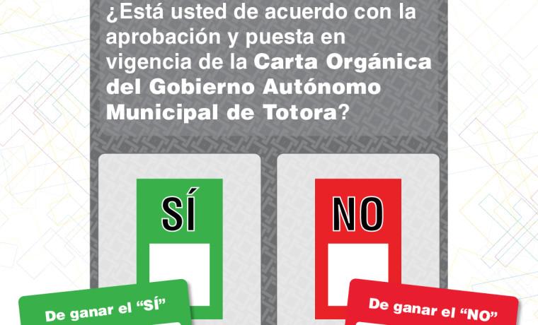 161024-afiche-referendo-preguntas-11