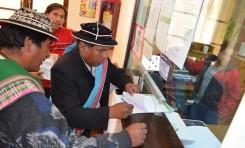 Pasos para el acceso a la autonomía indígena originario campesina