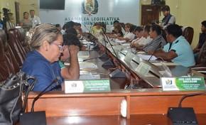 Asamblea Legislativa de Beni remitió a Diputados las ternas de postulantes al Tribunal Electoral Departamental