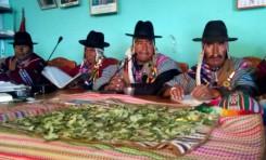 Dificultades que las y los líderes indígenas identifican en su acceso a la autonomía indígena