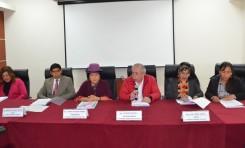 ¿Qué pasará si el TSE aprueba las solicitudes de alianzas políticas para las Elecciones Primarias 2019?