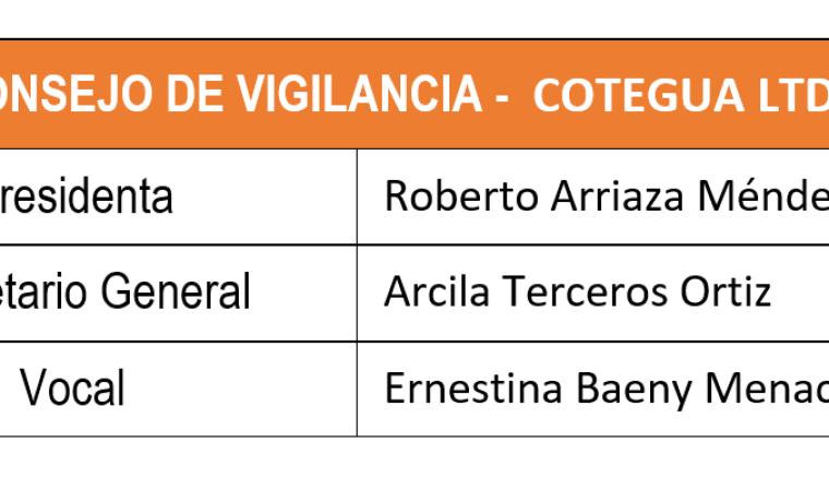 consejo_cotegua_151218_2