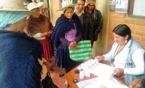 Resultados de la votación - Elecciones Primarias 2019