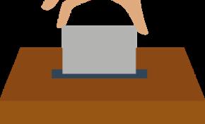 La ciudadanía boliviana elegirá a 352 autoridades en las Elecciones Generales de 2019
