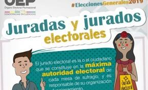 Seis actores esenciales son los garantes de la transparencia en las Elecciones Generales de 2019