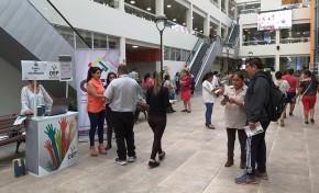Elecciones Generales: habilitan puntos de información en Yacuiba, Villa Montes, Bermejo y Tarija