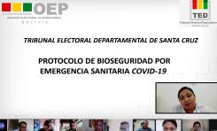 El TED Santa Cruz implementa Protocolo de Bioseguridad Ocupacional y Manual de Teletrabajo por la emergencia sanitaria