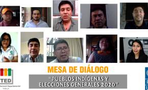 El TED Tarija y el PNUD efectúan una mesa de diálogo virtual con pueblos indígenas