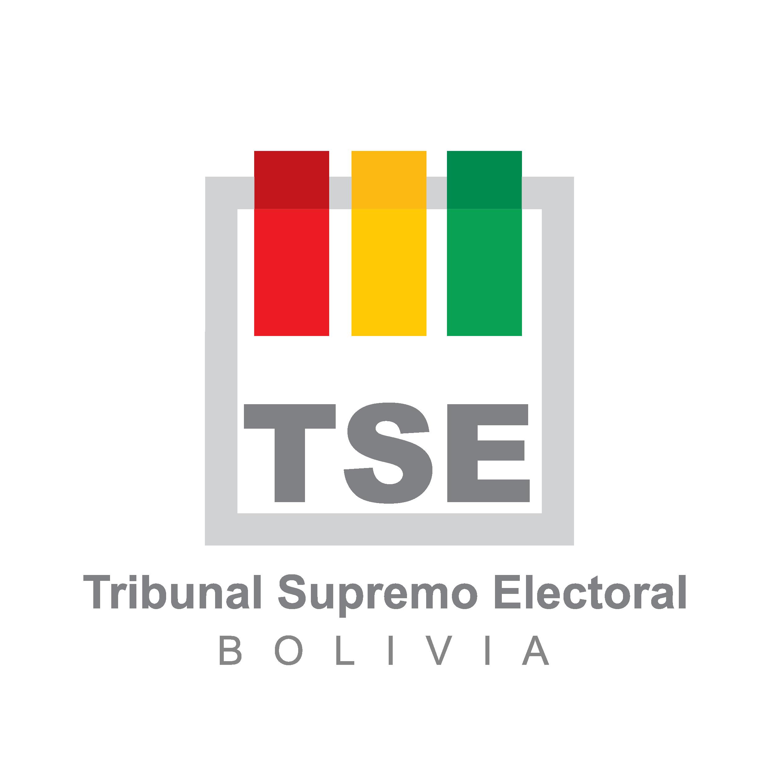 TSE copia-01