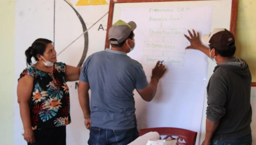 El Sifde continúa con el ciclo de talleres para organizaciones indígenas que participaron en las Elecciones Subnacionales 2021