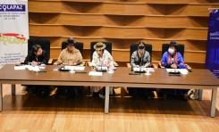 Concejales, concejalas y asambleístas reciben capacitación del OEP para atender casos de acoso y violencia política